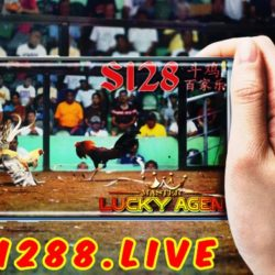 S128 Taruhan Adu Ayam Live Streaming